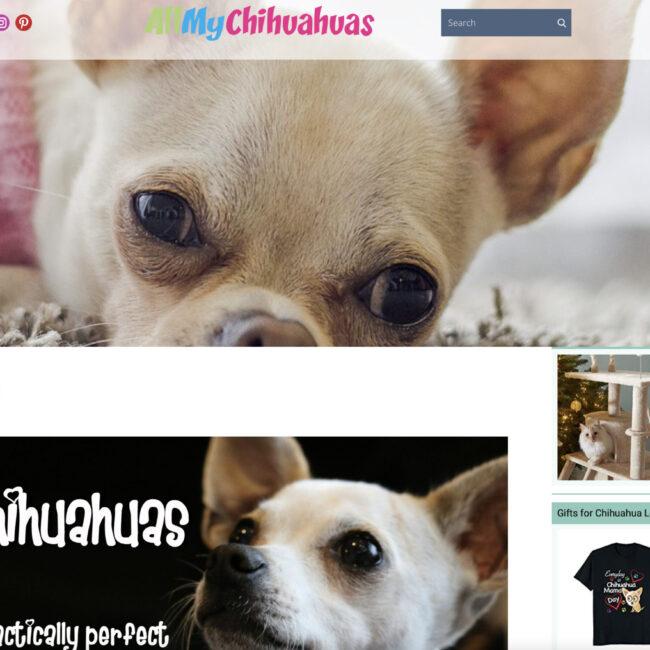 AllMyChihuahuas